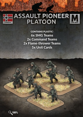 Assault Pioneer Platoon